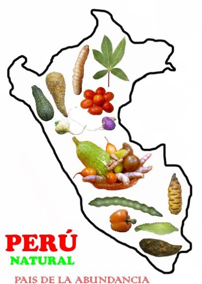 Alimentos peruanos con alto valor nutritivo